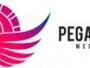 Pegasus Media, agencia publicidad programatica