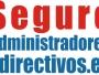 Seguros de Responsabilidad Civil para Directivos y Administradores de Empresasq